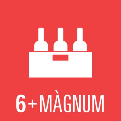 Lot de 6 ampolles + màgnum